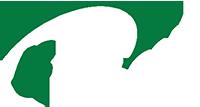 JSFirm Logo